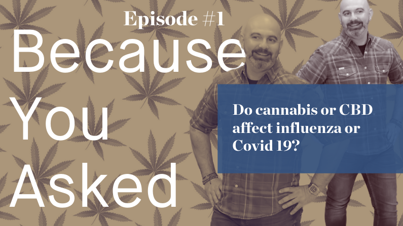 Cannabis, CBD and influenza: what you should know.
