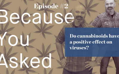 Does cannabis have a positive effect on influenza or COVID-19?